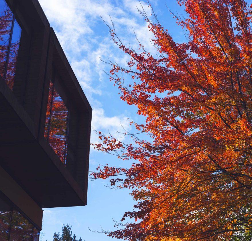 Orford Musique en automne